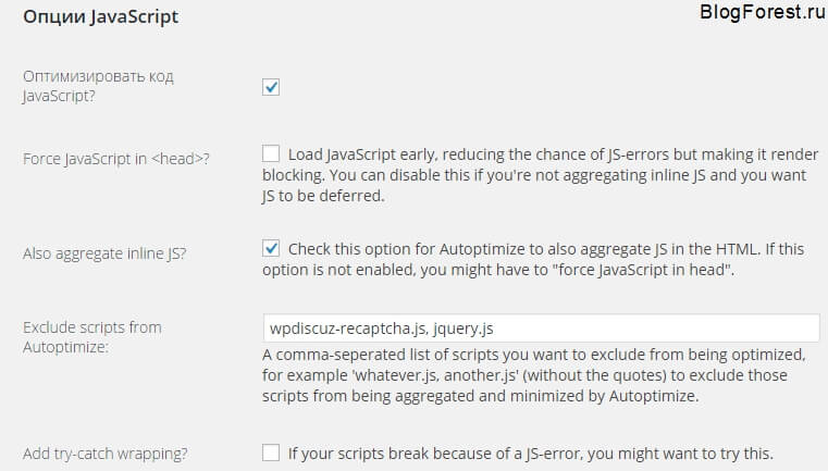 Опции Autoptimize JS