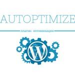 Правильная настройка Autoptimize, сократить HTML, JS, CSS.