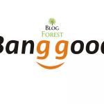 banggood-logo-blogforest-tizer