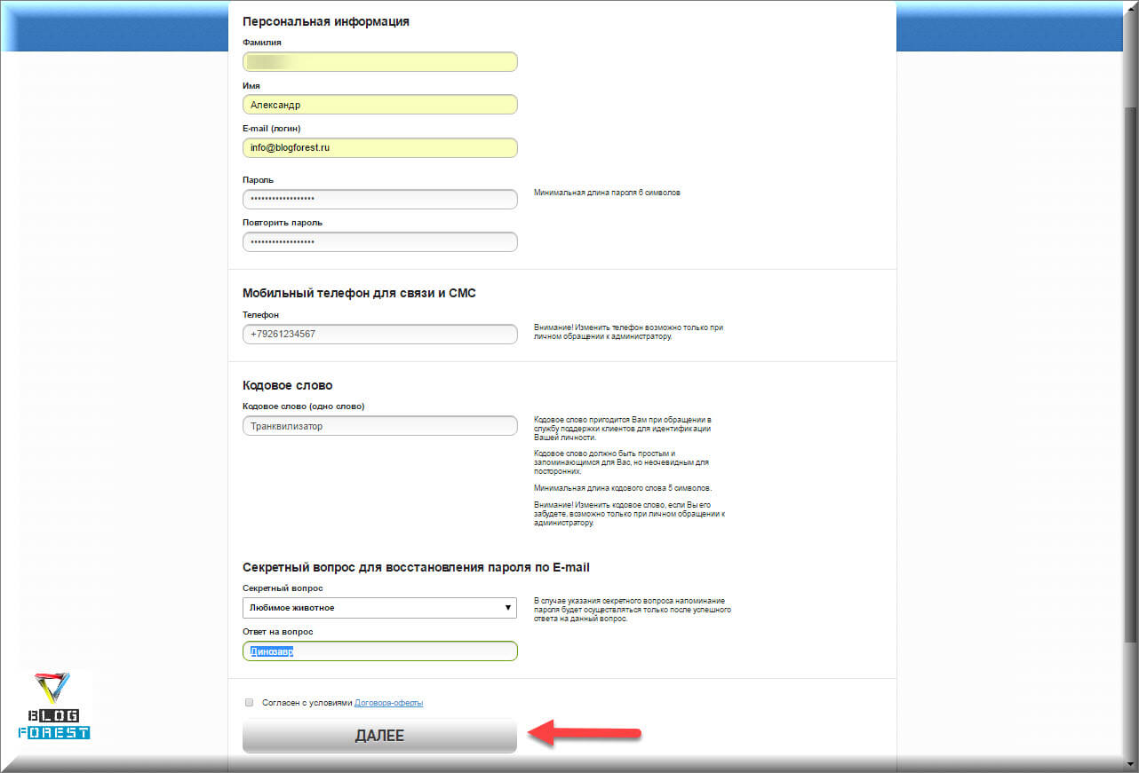 Регистрация на сайте 2domain.ru, ввод данных