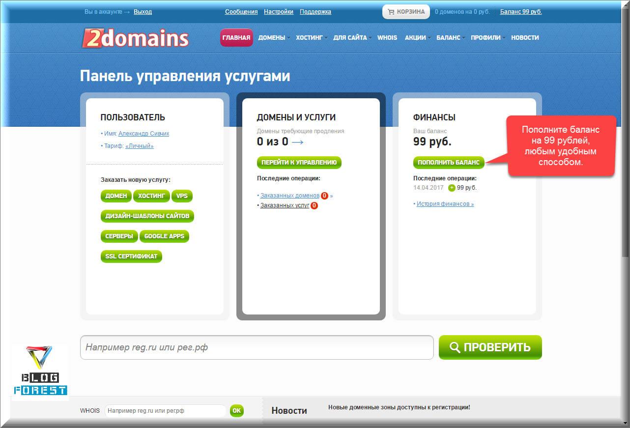 Пополнение счета на сайте 2domain.ru