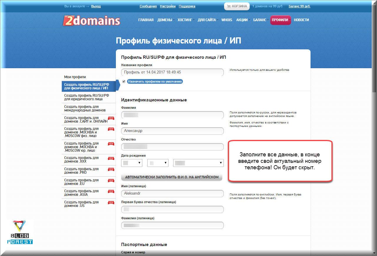 ВВод данных для профиля 2domain.ru