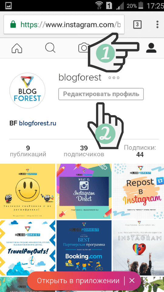 Blogforest-Instagram-profile-delete-11