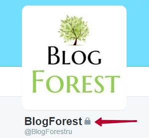 blogforest_twitter_account_private