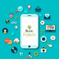obzor_smatfona_blogforest