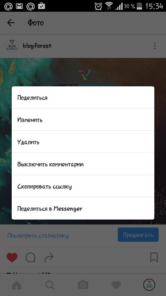 screenshot_insta-blogforest1