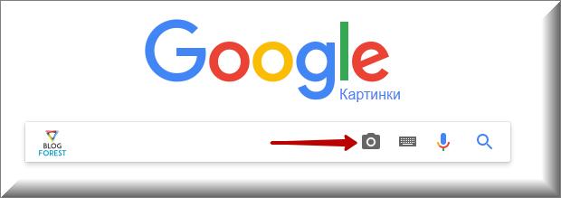 Поиск по картинке в Гугл
