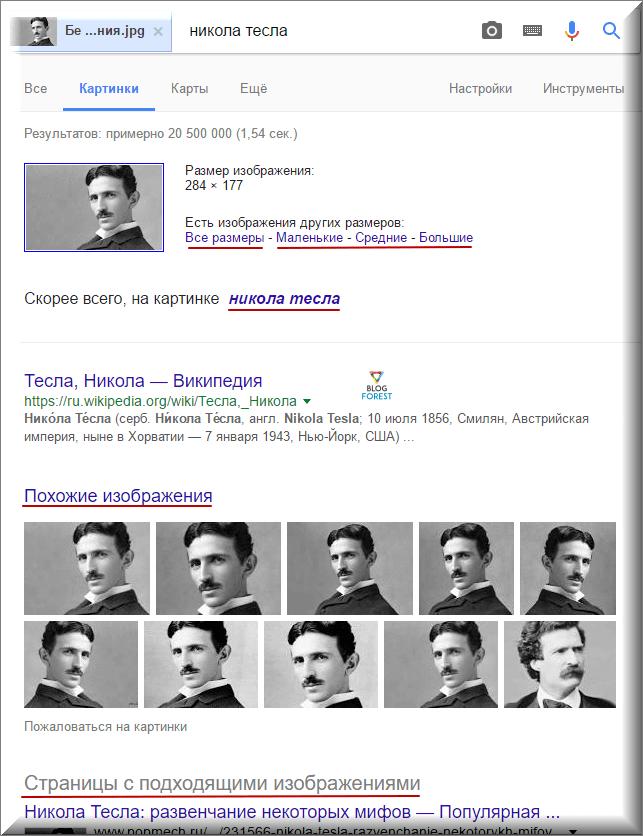 Результат поиска картинки в Гугл